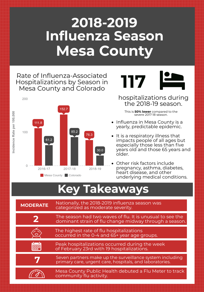 MCPH 2018-2019 Influenza Report