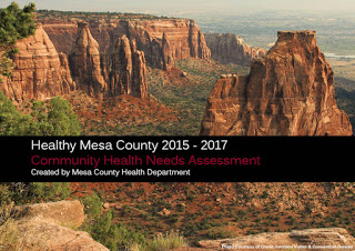 Needs assessment provides snapshot of community health