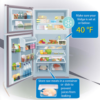 Maintaining your refrigerator for food safety