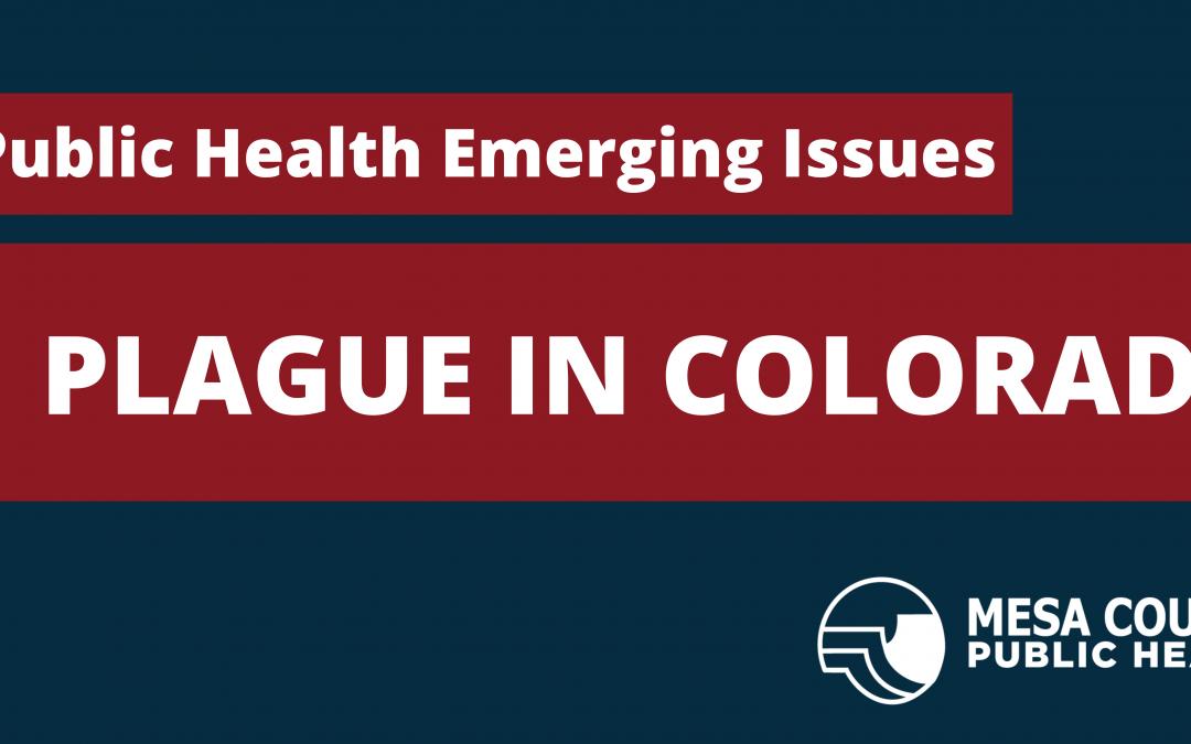 Public Health Emerging Issues: Plague in Colorado