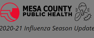 Public Health Emerging Issues: Minimal Flu Activity for 2020-21 Season